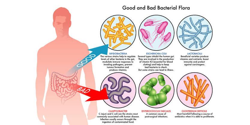 2014-07-10-lab-results-reveal-shocking-probiotics-count-in-sauerkraut-inline-3