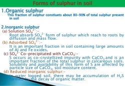 sulphur-management-in-rapeseed-and-mustard-27-638