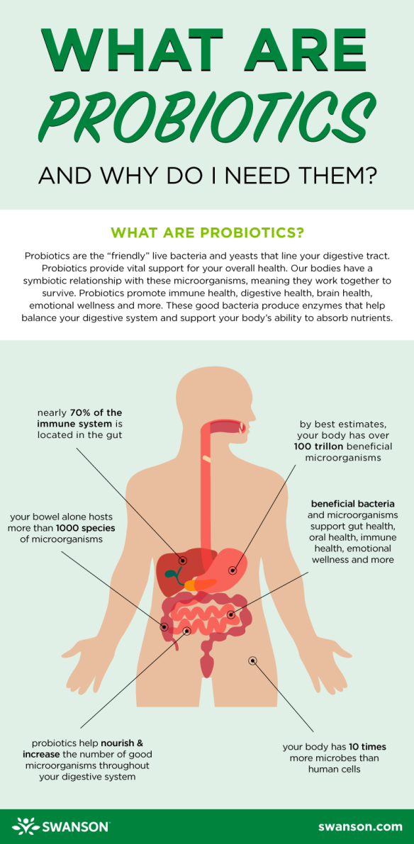 what_are_probiotics_infographic_f