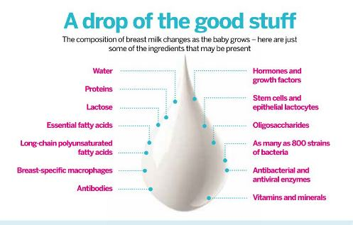 milk_infograph