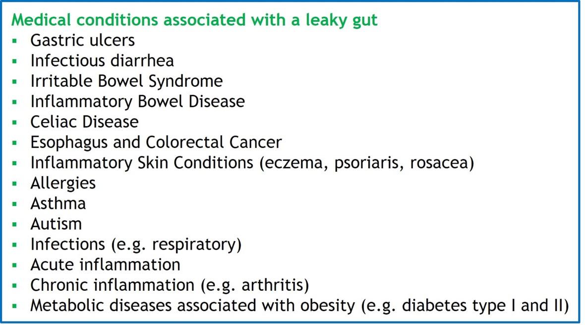 Leaky-Gut-Diseases