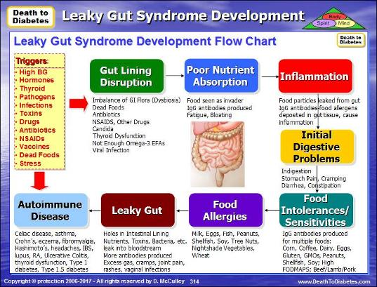 Leaky-Gut-Syndrome-Development-Flow-Chart-Death-to-Diabetes.jpg.opt537x409o0,0s537x409