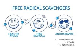 freeradicalscavengers-160618024656-thumbnail-4