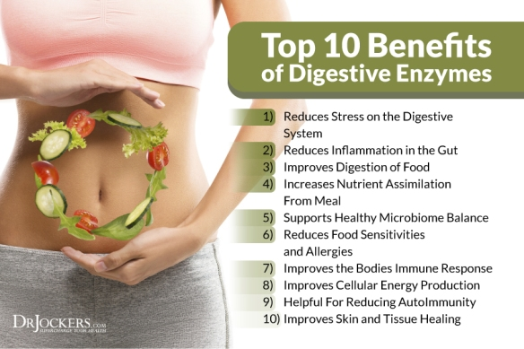 dig-enzyme-benefits