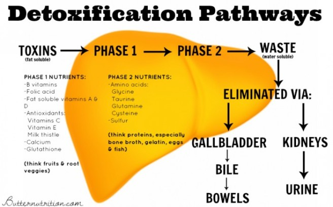 detox-pathways-e1411681365440