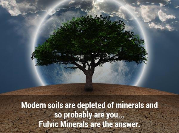 modernsoils