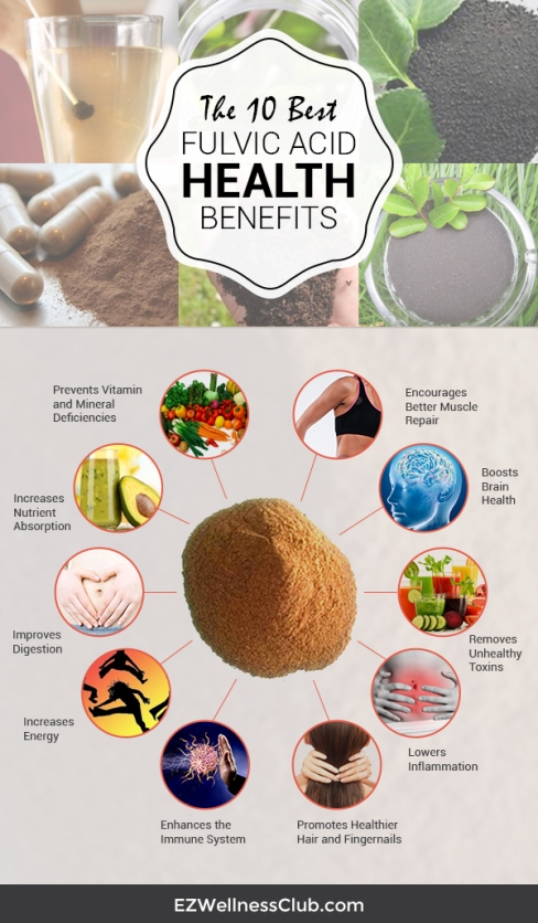 preview-full-The-10-Best-Fulvic-Acid-Health-Benefits