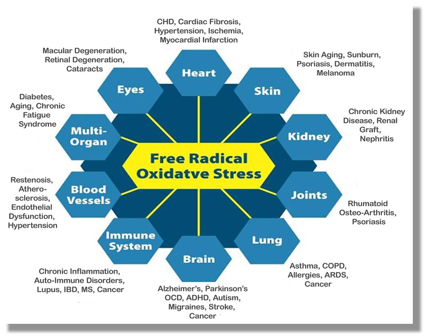 Oxidative-Stress_Diseases