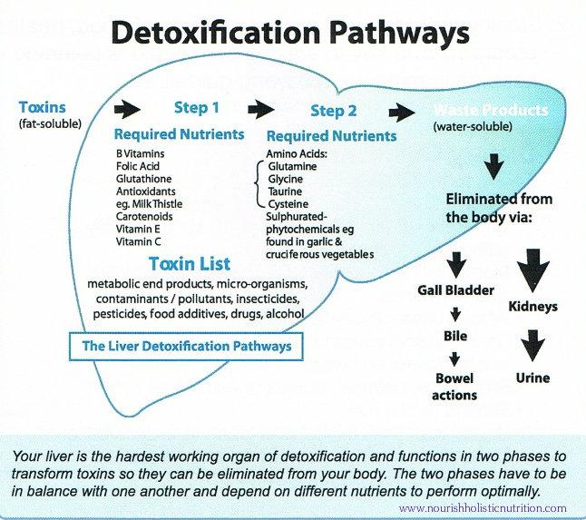 1370037958_detox-pathways