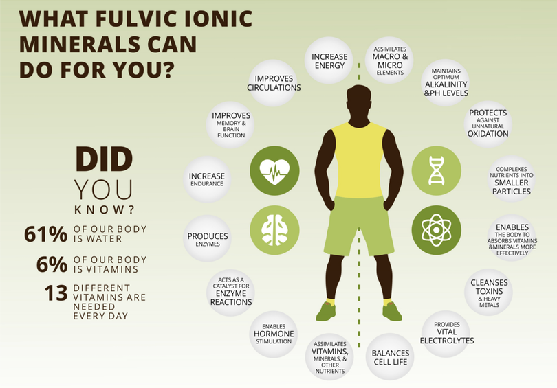 what_fulvic_minerals_can_do_for_you